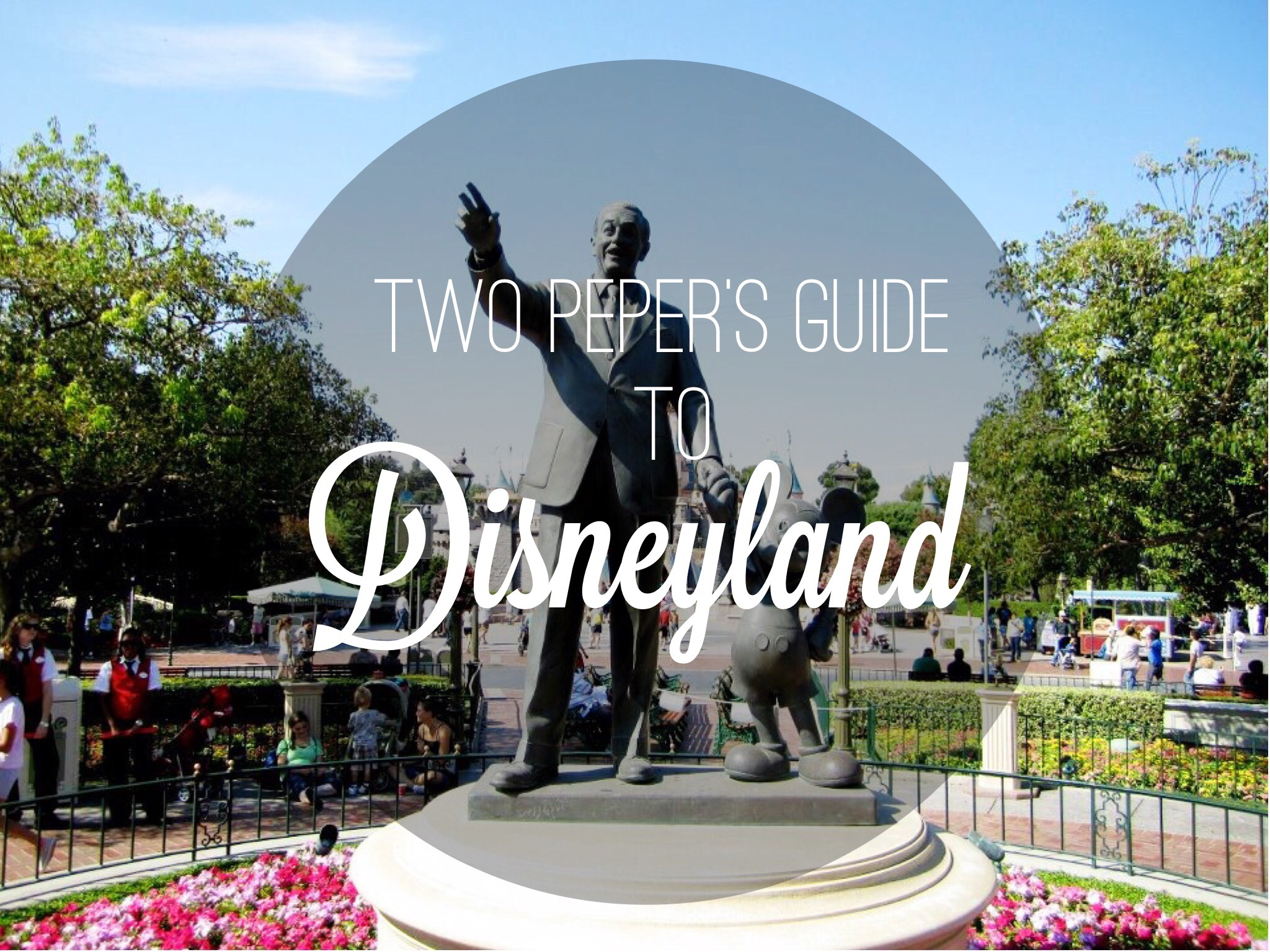 A Big ol Guide to Disneyland!