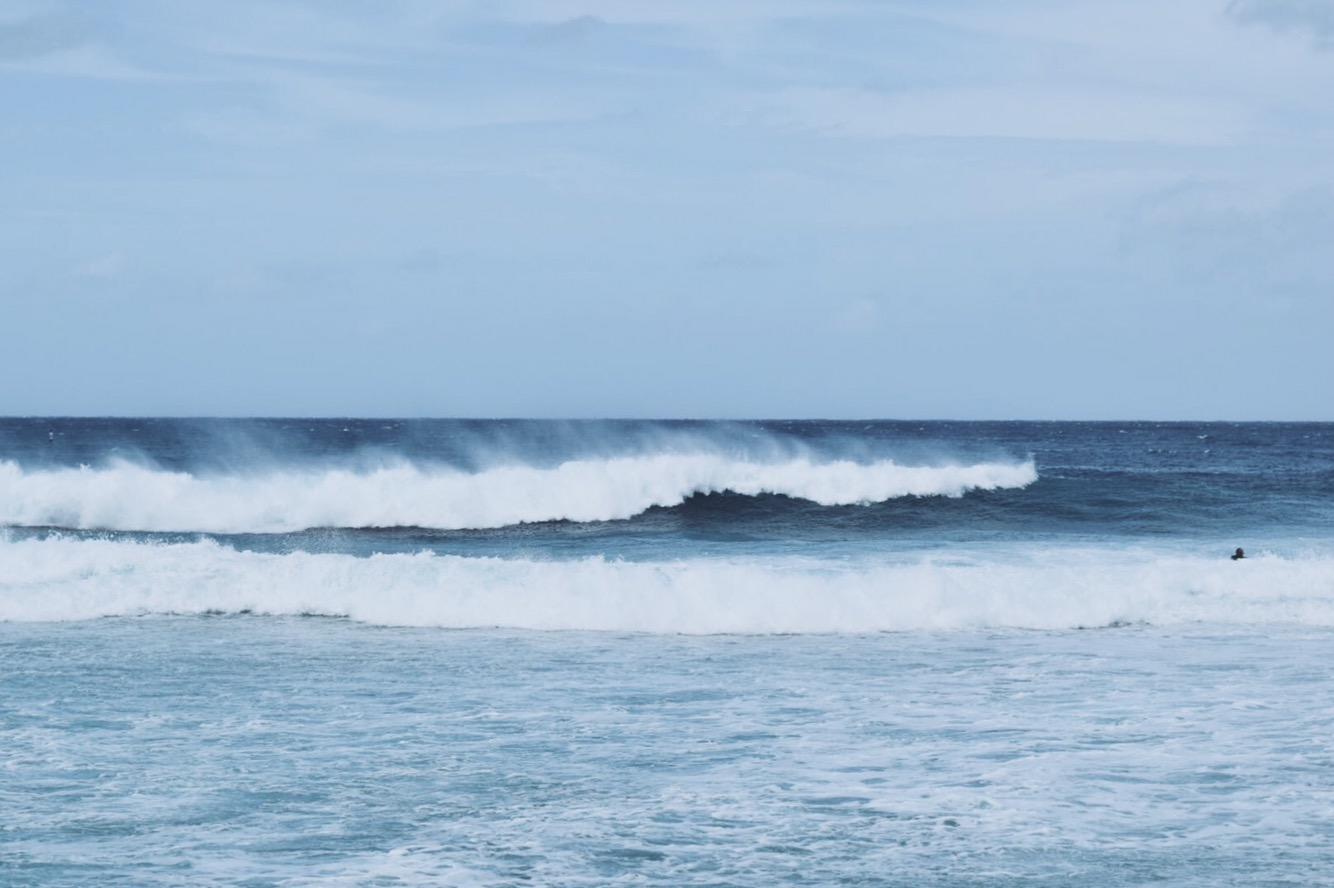 A Day on the North Shore
